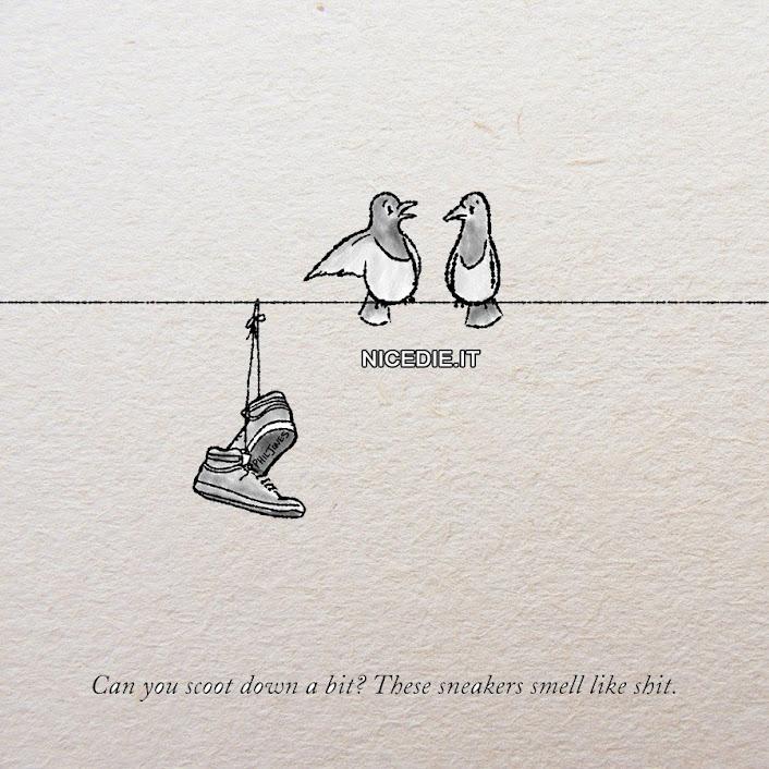 due scarpe da tennis sul filo della corrente in strada,due piccioli a fianco: Puoi farti più in la? Queste scarpe da tennis puzzano di merda