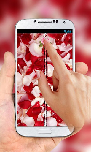Rose Petals Zipper Lock Screen