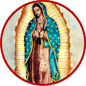 Our Lady of Guadalupe (FREE) icon