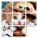 Kids Cat Slide Puzzle icon