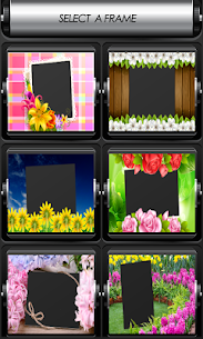 Flowers Photo Frames 2