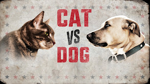 Cat vs. Dog thumbnail