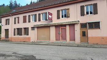 maison à Moussey (88)