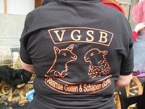 Photo: Shirt van de Vlaamse Geiten en Schapen Bond.