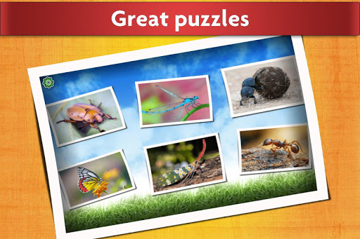Insect Jigsaw Puzzles Game - For Kids & Adults ud83dudc1e apkmr screenshots 2