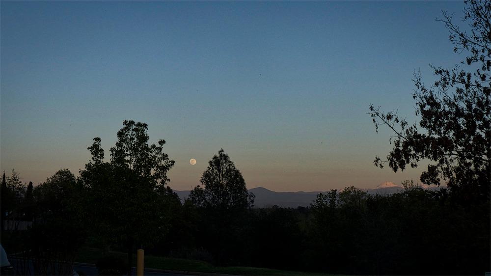 Eastern Vista.jpg