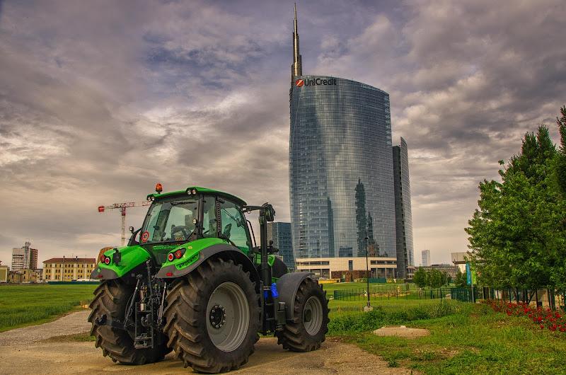 Due tipi di grano di Gian Piero Bacchetta