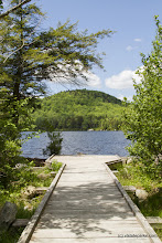 Photo: Sturdy dock at Kettle Pond State Park by Karalyn Mark