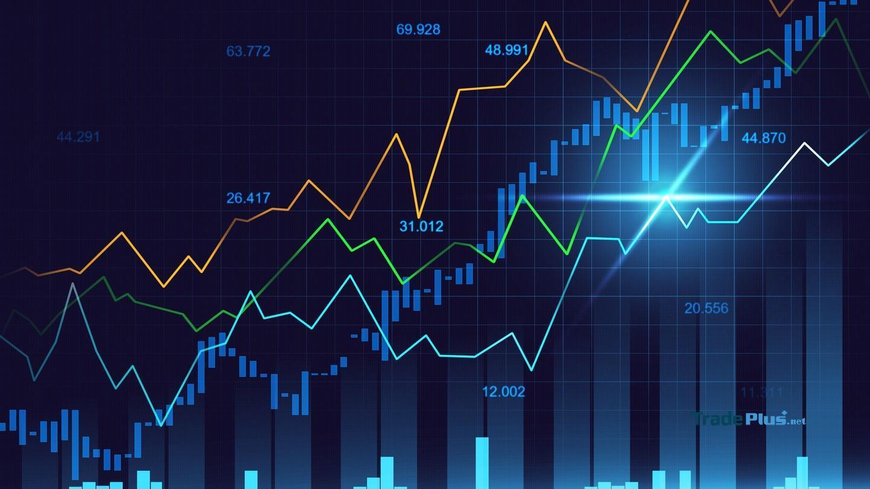 Thông tin cách đầu tư forex cho người mới mà bạn không thể bỏ lỡ