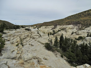 Photo: Sandstone Coulee rim