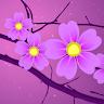 com.xllusion.livewallpaper.sakura