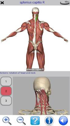 Visual Anatomy Freeのおすすめ画像2