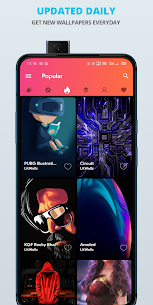 LitWallz Premium Apk – 4K, HD Wallpapers (Premium Features Unlocked) 3