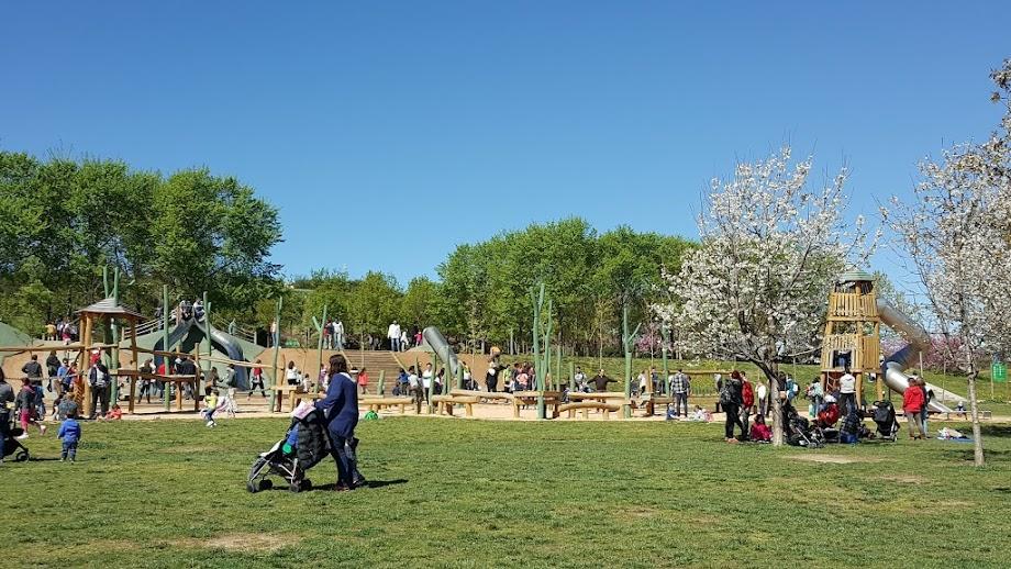 Foto Parque del Turó de Can Mates 14
