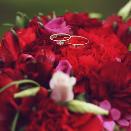 Wedding rings by Klaudia Migalska - Wedding Details ( wedding photography, zoom, wedding day, wedding, beautiful, red flowers, bucket, wedding rings, flowers )