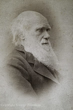 Photo: Charles Darwin in 1881, from a cabinet card. Photographer: Herbert Rose Barraud. Copyright of image: G. W. Beccaloni