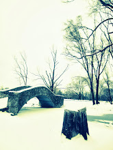 Photo: Stump and bridge in the snow at Eastwood Park in Dayton, Ohio.