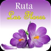 Ruta Las Flores