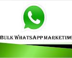 services for whats app bulk messages.