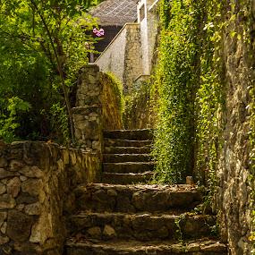 Green stairway by Mark Molinari - Landscapes Travel ( #stairway, #green, #travel,  )