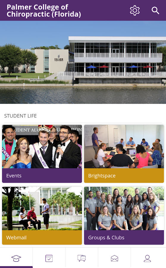 Palmer College - Florida- screenshot