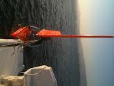 Photo: hosting the sail