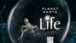 Planet Earth: Life thumbnail