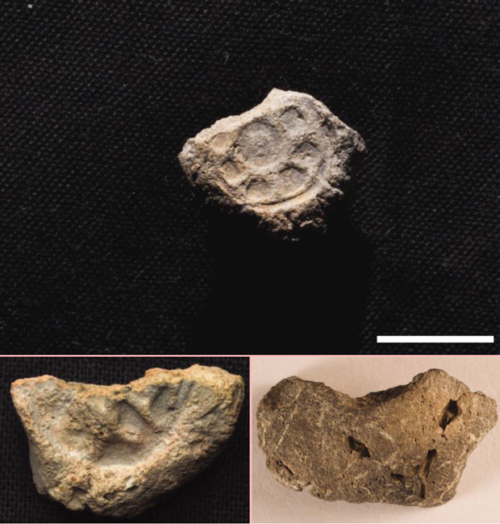 Clay Seals (Bullae) Found at Khirbet Summeily in Israel That Support the Existence of Kings David and Solomon