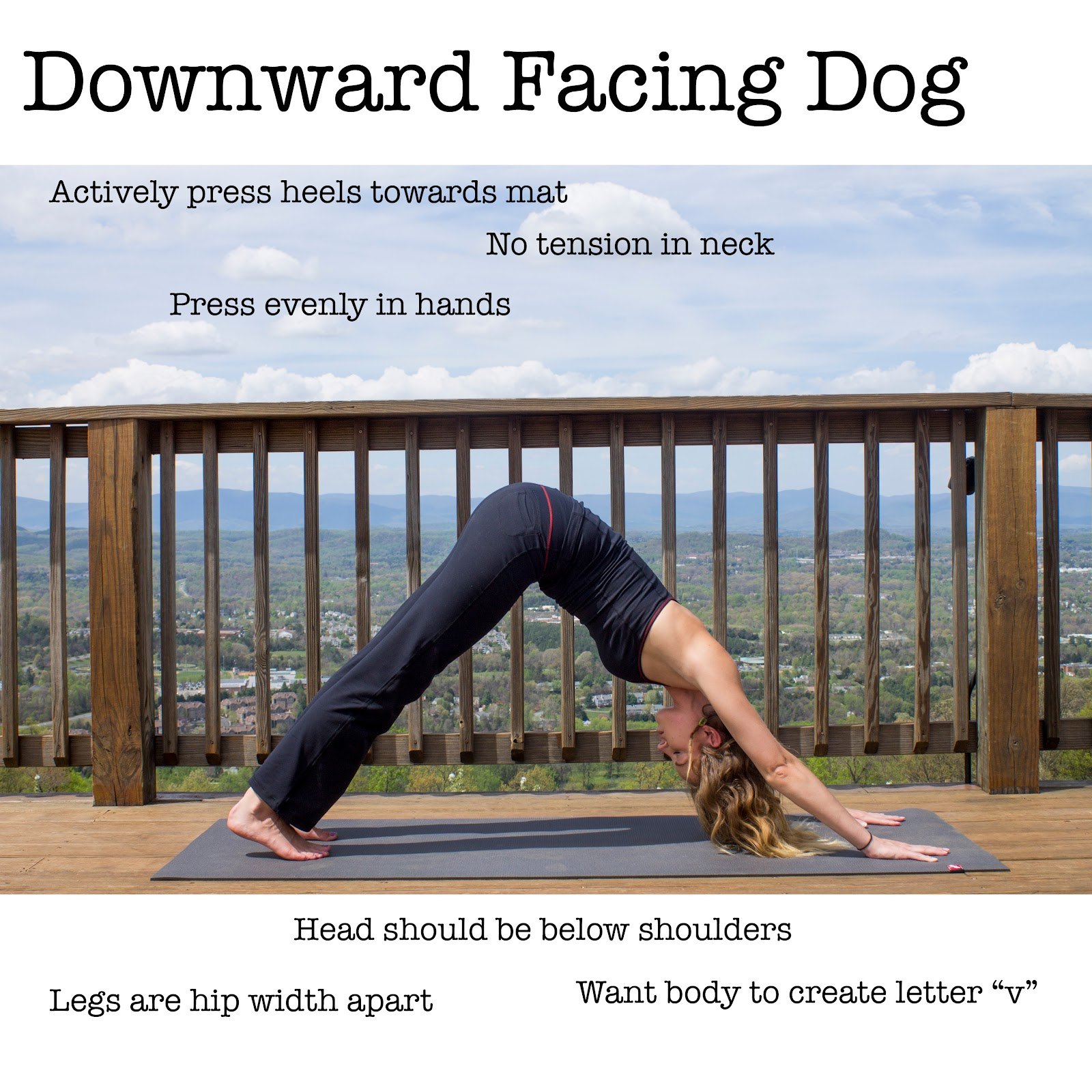 Correct Way to Do Downward Facing Dog Pose.jpg
