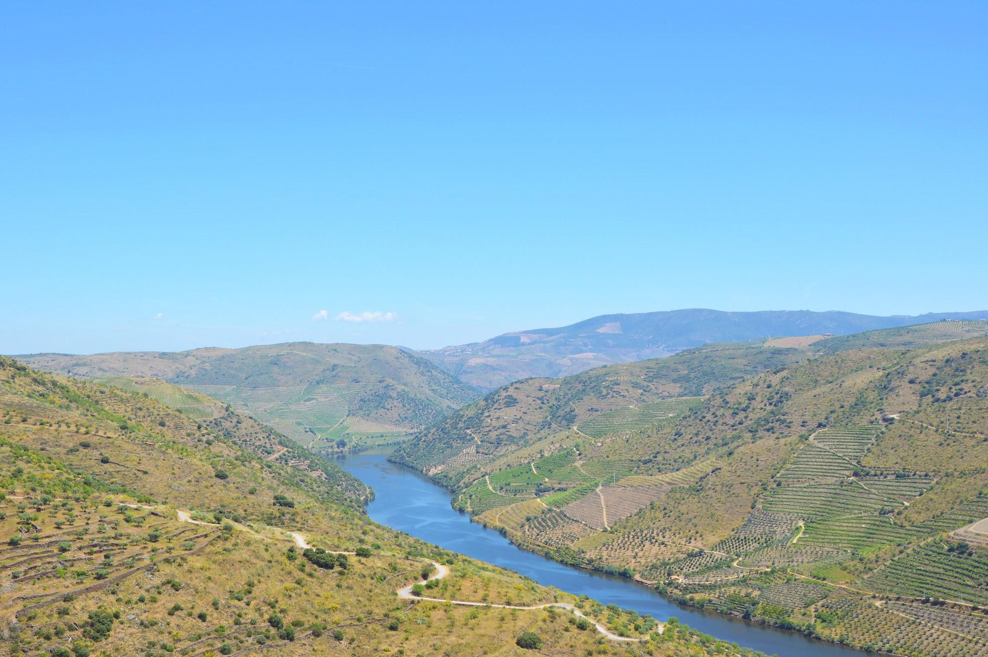 Douro-reis