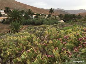 Photo: Fuerteventura - Betancuria