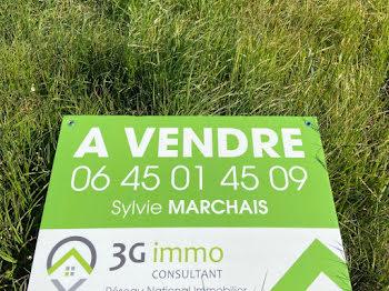terrain à Villeneuve-sur-Yonne (89)