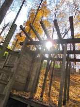 Photo: Golden sunlights and leaves on a wooden structure at Hills and Dales Metropark in Dayton, Ohio.