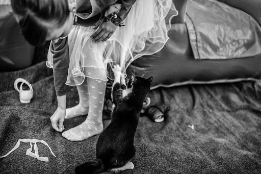 Wedding photographer Petr Wagenknecht (wagenknecht). Photo of 16.10.2016