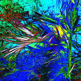 Grass and Water by Edward Gold - Digital Art Abstract ( red, digital photography, abstract art, blue, grass, plants, yellow, artistic, water, colorful, digital art,  )