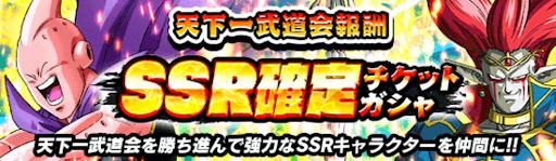 SSR確定(通常)
