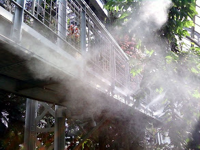 Photo: Misters added the appropriate humidity in the Jungle Room.
