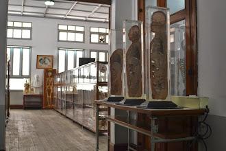 Photo: Congdon's anatomical museum