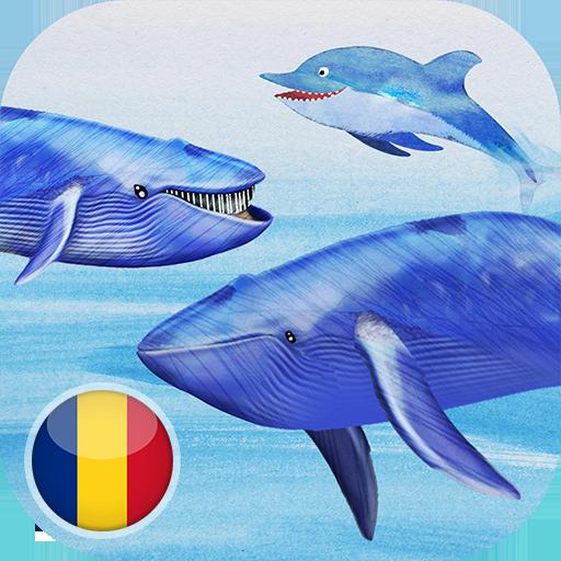 Balene si delfini 教育 App LOGO-硬是要APP