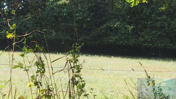 terrain à Lamarque-Pontacq (65)