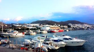 El puerto de Carboneras descargó el año pasado 800.000 kilos de pesca fresca.