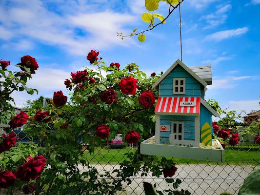 Happy House  di nena