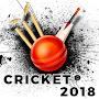 IPL 20  Live Score