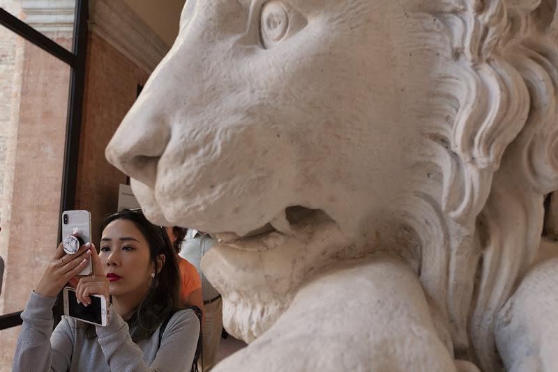 attenti al leone di Moretti Riccardo