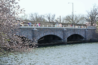 Photo: A bridge along the Tidal Basin