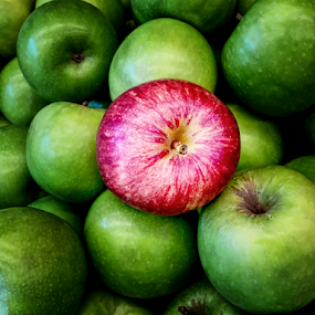 Outstanding Apple by Sam Song - Food & Drink Fruits & Vegetables ( sour, sweet, red, green )