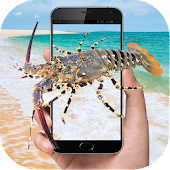 Crayfish in phone joke