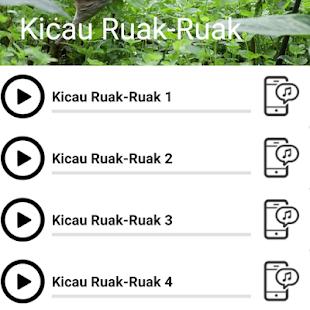 kicau ruak ruak offline - náhled