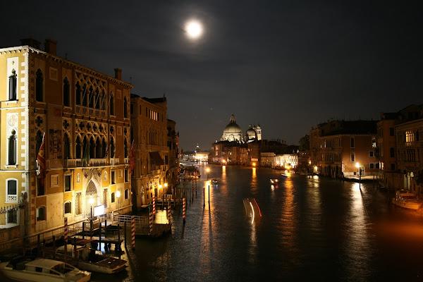 luna veneziana di l'ArTeMiSia