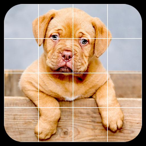Baixar Tile Puzzles · Pets para Android